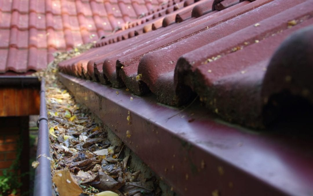 keep your property in better condition when you clean your gutters